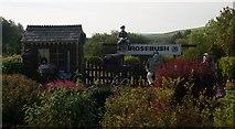 SN0729 : Erstwhile Rosebush Station at Tafarn sinc by Becky Williamson