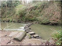 NZ2567 : Stepping stones crossing the Ouseburn by Graham Robson