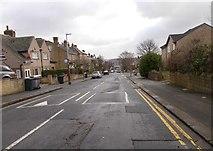 SE1316 : Springwood Avenue - Oastler Avenue by Betty Longbottom