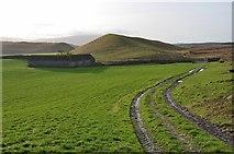 NT2756 : Fields near Fullarton by Jim Barton
