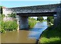 SJ6769 : Richardson's Bridge No 178 by Mat Fascione