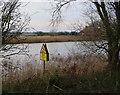 TG3802 : River Yare by Hugh Venables