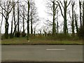 SK9110 : Gap in the trees, Barnsdale Avenue by Alan Murray-Rust