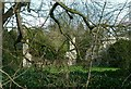 SK9211 : A glimpse of Exton Old Hall by Alan Murray-Rust