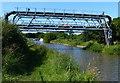 SJ6871 : Billinge Green Pipe Bridges by Mat Fascione