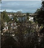 SX9065 : Houses on St Michael's Road, Torre by Derek Harper