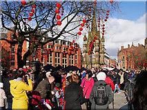 SJ8398 : Chinese New Year Celebrations, Albert Square by David Dixon