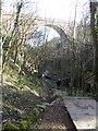 NZ4445 : Hawthorn Dene by Oliver Dixon