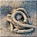 SH7882 : Lugworms at Llandudno by Gerald England