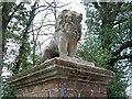 SY0393 : Lion, Rockbeare Manor by Derek Harper