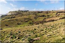 TR3442 : Langdon Hole by Ian Capper