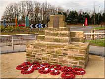 SD4210 : The Ringtail Memorial by David Dixon