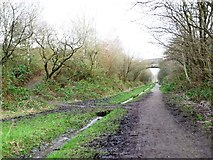 SK0296 : The Longdendale Trail, heading north east by Christine Johnstone