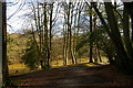 TQ2729 : Ouse Valley Way dropping towards Fish Pond, Nymans Woods by Christopher Hilton