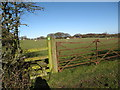 SJ2657 : Stile for footpath through grazing field heading for B5101 by Maggie Cox