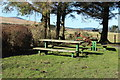 NX5593 : Picnic Area at Carsphairn Heritage Centre by Billy McCrorie
