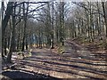 NY1532 : Junction of two paths on Setmurthy Common by Richard Thomas