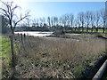 SU1077 : Slurry pit, Manor Farm by Vieve Forward