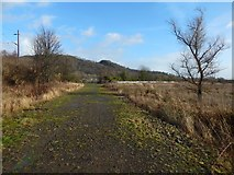 NS4274 : Path near the shore at Milton by Lairich Rig
