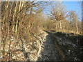 SU7493 : Working on the Chiltern Way by Des Blenkinsopp