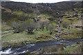 SH9524 : Water streaming off the hillside by Bill Boaden