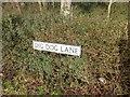 TQ8039 : Street nameplate, Digdog Lane, near Frittenden by Chris Whippet