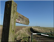 TA0114 : Signpost and track on the wolds above Worlaby by Neil Theasby