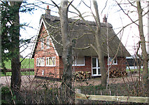 TG3204 : Reed Cutter's Cottage, Rockland Staithe by Evelyn Simak