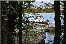 SX5052 : Quay, Hooe Lake by N Chadwick