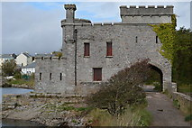 SX5052 : Radford Castle by N Chadwick