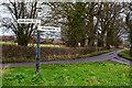 ST2734 : Sedgemoor : Rhode Lane by Lewis Clarke
