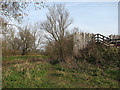 TL4354 : Where trains once crossed the Cam by John Sutton