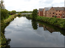 SP2195 : River Tame at Hemlingford Mill by Mat Fascione