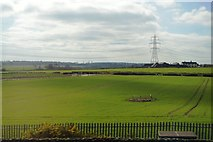 SK1409 : Fields, Fulfen Farm by N Chadwick