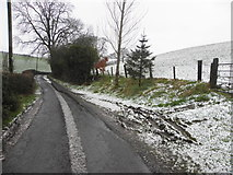 H4277 : Rash Road, Mountjoy Forest East Division by Kenneth  Allen