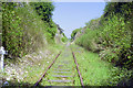 TR2648 : Cutting on East Kent Railway, 1992 by Robin Webster