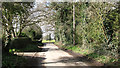 TG3708 : South Burlingham Road approaching Lodge Road by Evelyn Simak