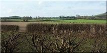 ST6961 : Farmland by Mill Lane by Derek Harper