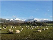 SH5968 : Carneddau Mountains, Snowdonia by I Love Colour