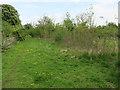 TL4364 : Scrubby field by Gun's Lane by Hugh Venables