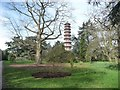 TQ1876 : The Pagoda at Kew Gardens in winter by Christine Johnstone