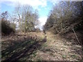 SK1644 : Former trackbed of the North Staffordshire Railway Ashbourne Branch by Ian Calderwood