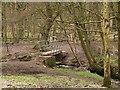 SE2132 : Footbridge over the Tyersal Beck by Stephen Craven