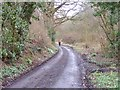SO7394 : Rindleford Path by Gordon Griffiths