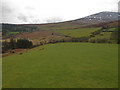 S2712 : Nire Valley Fields by kevin higgins