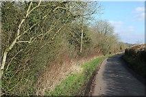 ST6660 : Priston Lane by Derek Harper