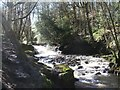 SE0736 : Upper falls, Goit Stock Wood by Gordon Hatton