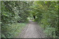 TL5064 : National Cycleroute 11 & Fen Rivers Way by N Chadwick