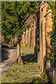 TQ2551 : Path up Colley Hill by Ian Capper