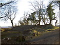 ST5858 : Burledge Hill fort by Neil Owen